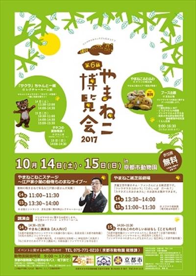 京都市動物園ツシマヤマネコ