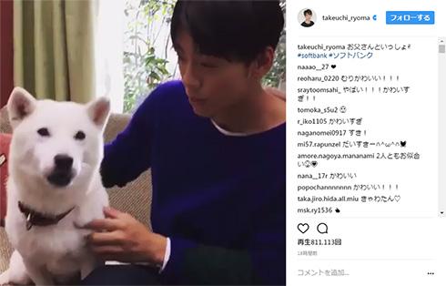 竹内涼真 お父さん犬 Instagram そっぽ