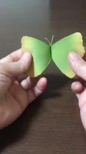 イチョウの葉 蝶 作り方 落ち葉