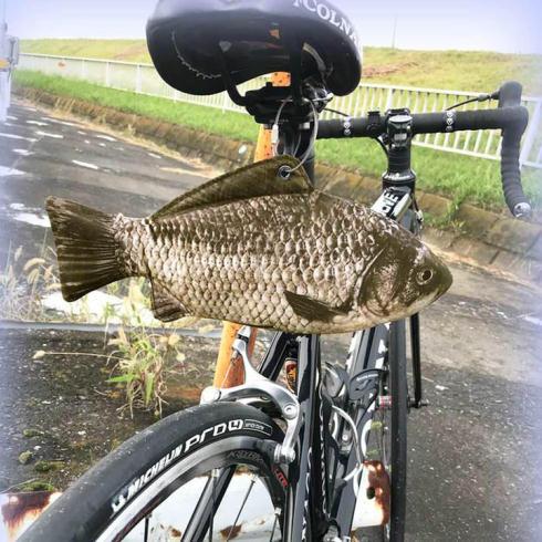 マルチケースフナ自転車使用