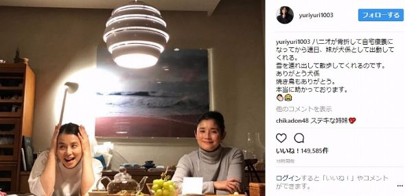 石田ゆり子 石田ひかり 姉妹 ハニオ 骨折 Instagram