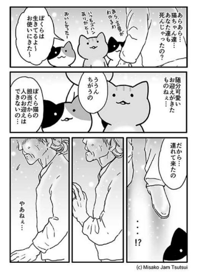 ずっと… 漫画 猫 おばあちゃん お迎え 貴女だけ