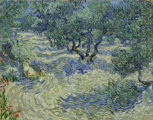 ゴッホ オリーブの木々