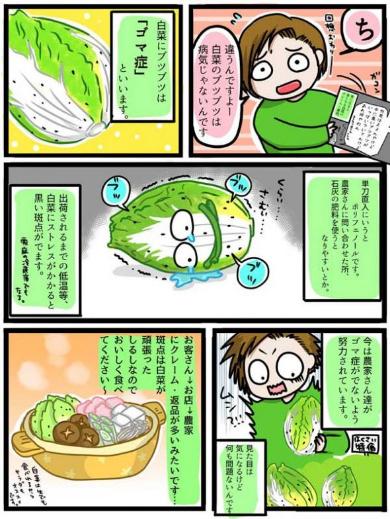 白菜 黒いブツブツ 漫画 斑点 ゴマ症