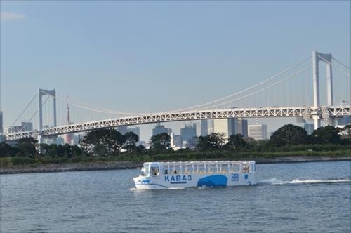 TOKYO NO KABA