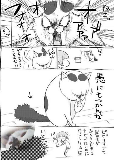 犬 猫 漫画 動物病院 松本ひで吉