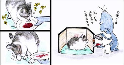 猫 おじいちゃん 姐さん きせき 漫画