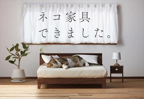 大川市ネコ家具