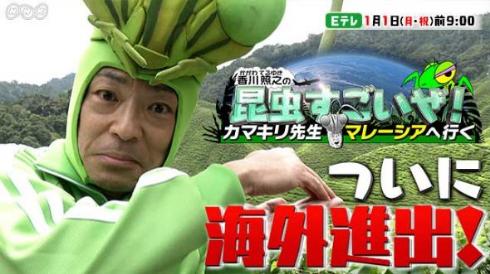 香川照之の昆虫すごいぜ!カマキリ先生 NHK マレーシア 海外