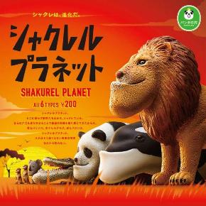 シャクレル カービィ アゴ パンダの穴 コラボ