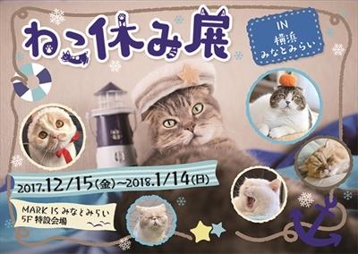 ねこ休み展横浜