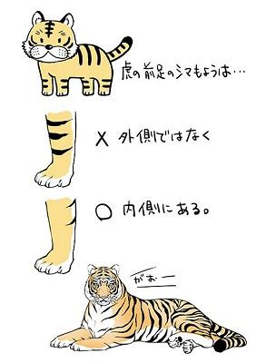 虎の前足のシマ模様は内側にある 描いて気付いたイラスト手法について