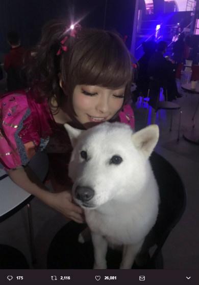 きゃりーぱみゅぱみゅ ソフトバンク お父さん犬 YouTube FanFest 2017 YTFF キス