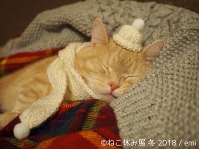 ねこ休み展・冬