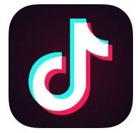 TikTok アプリ ショートビデオ 動画