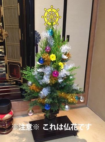 仏花 極楽 宝樹 クリスマスツリー 偶然 気のせい