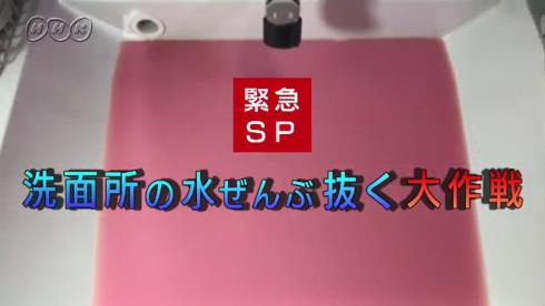 nhk テレビ東京 池 洗面所 水 ぜんぶ抜く