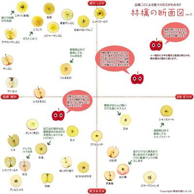 ブドウ家系図