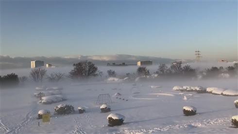 4年ぶり大雪で東京が雪景色 夜の浅草寺や朝霧に包まれた多摩川河川敷など、SNSで話題の美しい風景写真