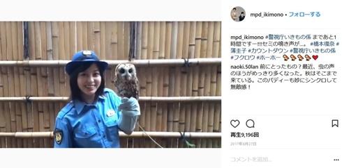 橋本環奈 警視庁いきもの係 動物