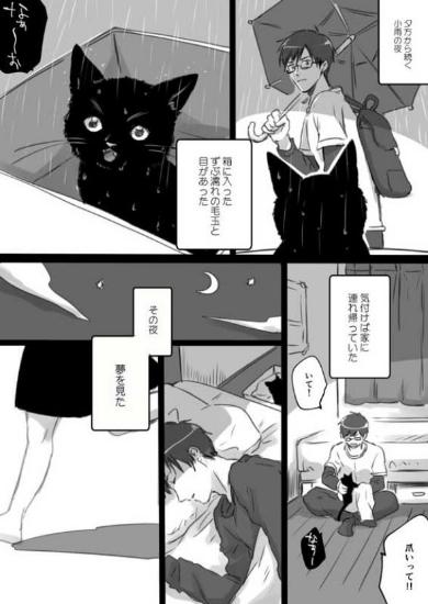 君の人生全部を幸せにしてあげたい話 漫画 猫