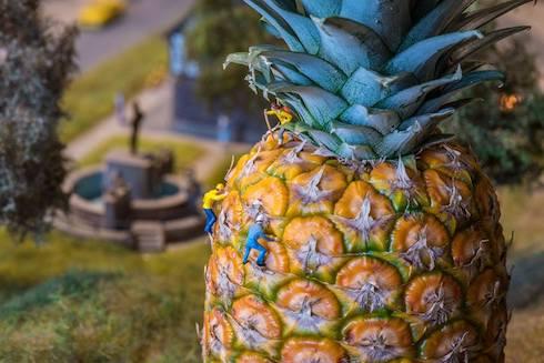 パイナップルのミニチュア写真