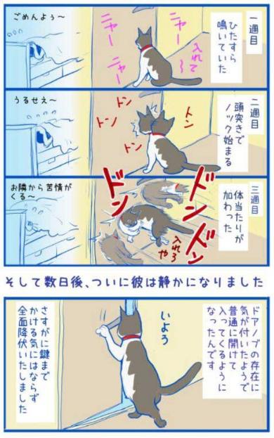 猫 寝室 締め出す 漫画