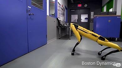 ボストン・ダイナミクス ロボット 犬 仲間