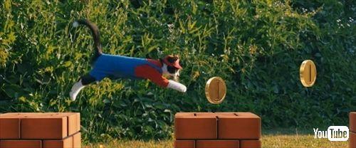 スーパーマリオキャット