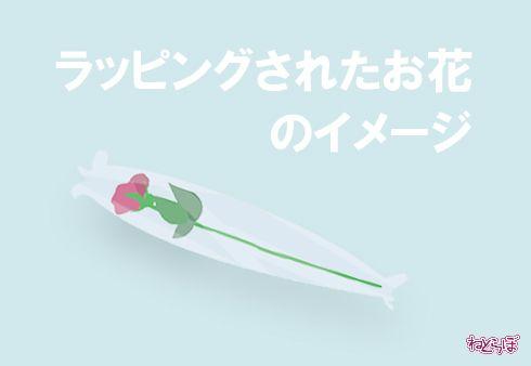 平昌 アイススケート 投げ込み プレゼント