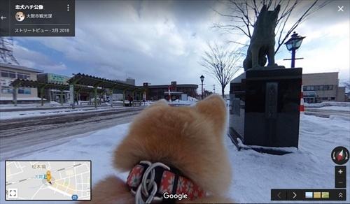 秋田犬目線のストリートビュー