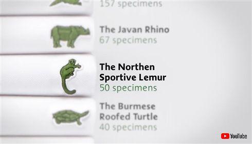ワニのロゴでおなじみのラコステ、ワニじゃない動物のロゴを発表 絶滅危惧種10種類モチーフ、即完売に