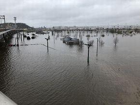 日産スタジアム 新横浜公園 浸水 3月 遊水池 鶴見川