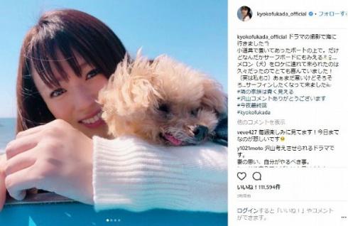 深田恭子 メロンパンナ 犬 ペット 隣の家族は青く見える