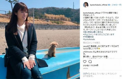 深田恭子 メロンパンナ 犬 ペット 隣の家族は青く見える 最終回