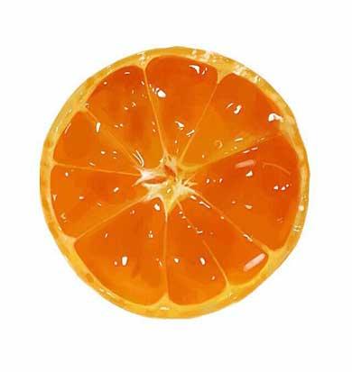 写真にしか見えないフルーツや野菜のイラストにtwitterで驚きの声 写真