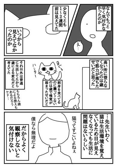 猫 失明 漫画 腎臓
