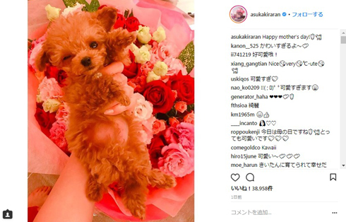 明日花キララ 愛犬 持ち方 批判 Instagram