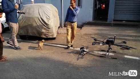 インド やりおるマン 子犬 救出