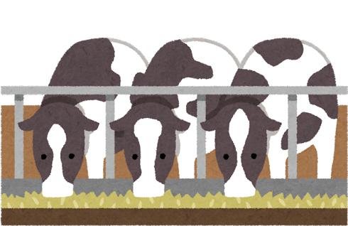 牛が飲み込む「カウマグネット」「カウマグ」