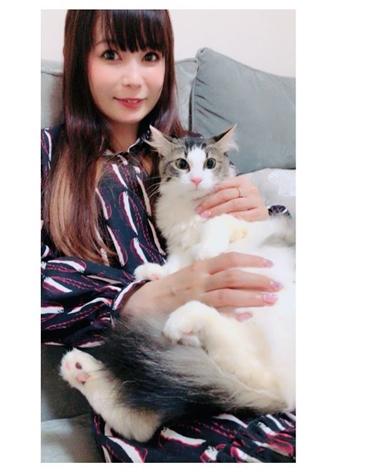 中川翔子 保護猫 マミタス ピンク 中川桂子 ミラクルキャット ちび太 ショコラ