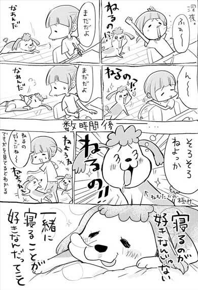 犬と猫どっちも飼ってる 漫画 松本ひで吉 単行本化