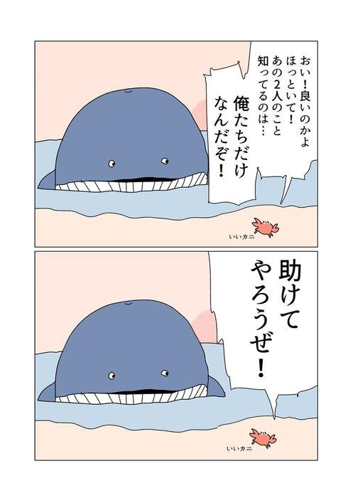 ソレナガスクジラ3