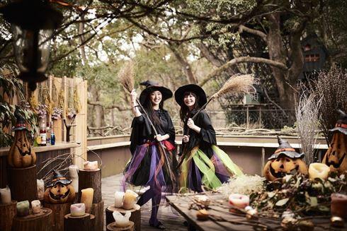 魔女 ハロウィン イベント