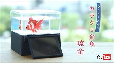 カラクリ金魚