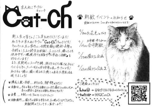 京都大学 猫サークル ビラ