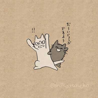 しかるねこ Twitter 叱ってくれる 猫 あまやかすねこ