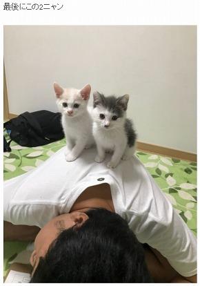 サンシャイン池崎 保護猫 ネコ 風神 雷神 猫の森 ハライチ 岩井勇気