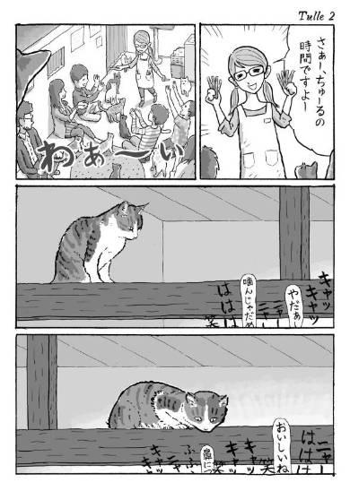 湊文 菊ちゃん