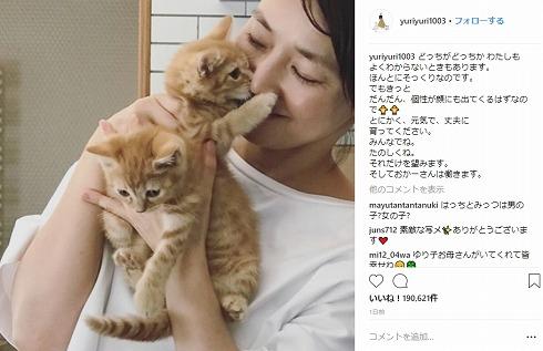 石田ゆり子 はっち みっつ はちみつ兄弟 猫 Instagram 動物病院
